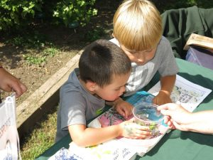 What the heck is that?! Teaching kids about insects and the many ways bugs benefit us can help them understand that not all insects are scary or icky.
