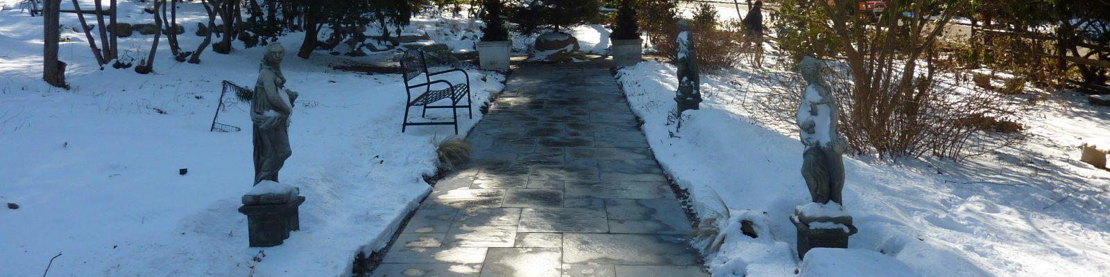 cropped-2011-02-23_Meadowbrook_02_JAS_P1030004.jpg