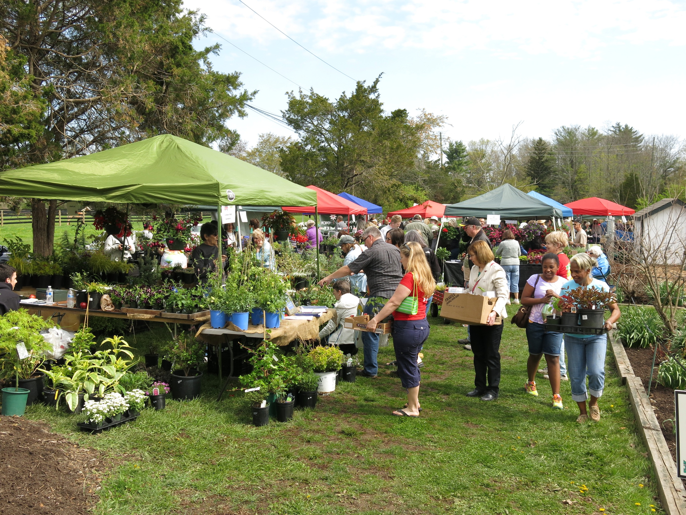 Homegrown Perennials, Trees, And Shrubs; Master Gardener Grown Tomatoes; A  Wonderful Garden Market Of Selected Top Notch Nurseries; And A Secondhand  Sale Of ...