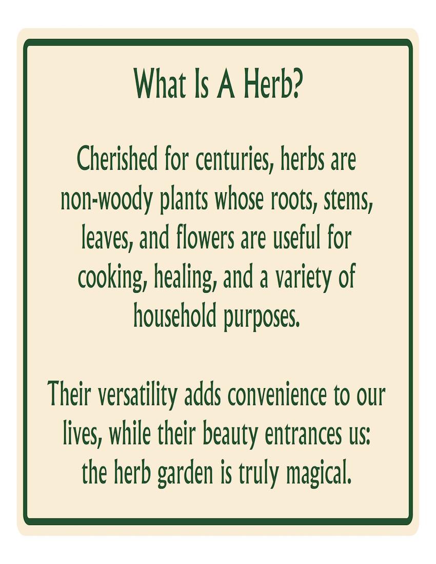 HerbWhatIs